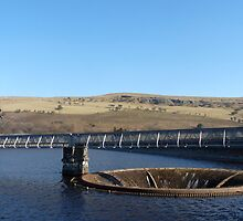 "Spill ove flowr at ""Pontsticill Reservoir"" Brecon Beacons by wizard327"