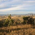 Omeo Valley by John Hurle