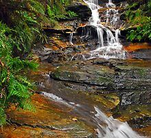 Leura Cascades #2 by Terry Everson