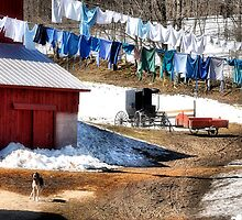 Laundry Day by George's Photography
