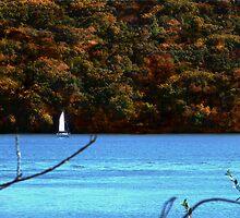 Autumn Sailing II ~ Lake Jacomo by Cynthia Chronister