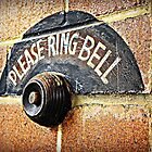 Please Ring Bell by Ann Evans
