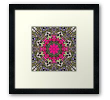 Pirates of the Pansies Fractured Framed Print