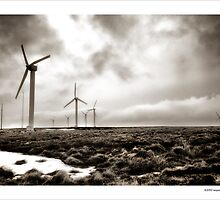Earth , Wind , Ice by Ian Parry