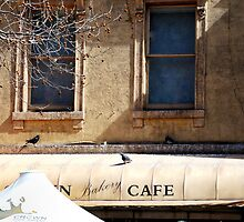 The Awning - Swanston Street, Melbourne by bobinvy