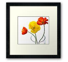 Spring Pop Framed Print