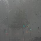 Melbourne storm by Lanii  Douglas
