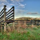 Cattle Ramp by Frank Moroni