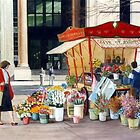 The old flower stall, Martin Place by Freda Surgenor