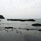 Black Rocks - Oregon by mackography
