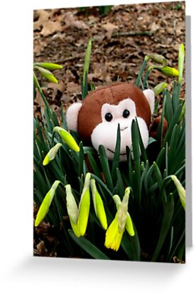 Spring Is A Great Time To get Outside by NatureGreeting Cards ©ccwri