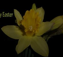 Happy Easter by Ann Persse