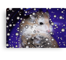 Hamsters Away Canvas Print