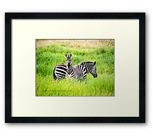 Home On the Range (Montana Ranch) Framed Print