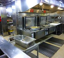 """Stainless Steel Vault """"Dawn Princess"""" Kitchens by Keith Richardson"""