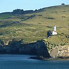 Otago Peninsula Lighthouse, Dunedin, NZ by Keith Richardson