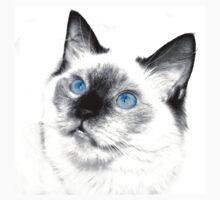 Blue Eyes by Jason Ruth