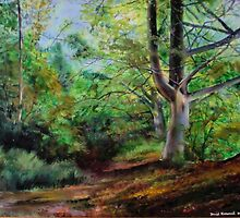 Sussex woodland ,below Chanctonbury Ring by David Kirkwood