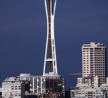 Space Needle by Micci Shannon