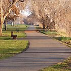 Walk Thru The Park by Stacy Colean