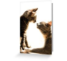 Seeing eye to eye Greeting Card