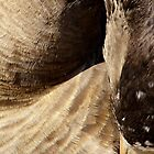 Goose Shapes #3 by Betsy  Seeton