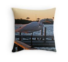 Sunset Surprise  Throw Pillow