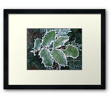 Frosted Spikes Framed Print
