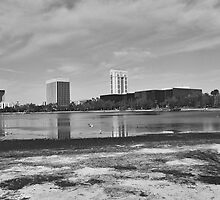 Lake Eola, Orlando Florida by sledgehammer