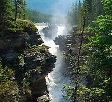 Athabaska Glory by Robin Webster