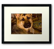 Please don't send me away! Framed Print