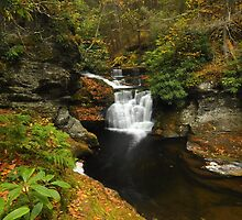 Upper Dingmans Falls In Autumn by Stephen Vecchiotti