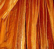 photoj Tasmania North - Mole Creek Caves by photoj