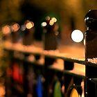 Manuka Fence by Geoff Smith