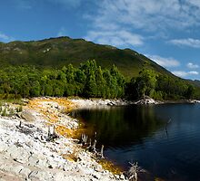 Lake Burbury Inlet by Shane Viper
