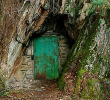 Long Tunnel Extended Gold Mine,Walhalla by Joe Mortelliti
