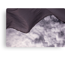 windthrown Canvas Print