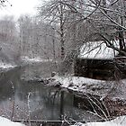 A wintery stream by Jcook
