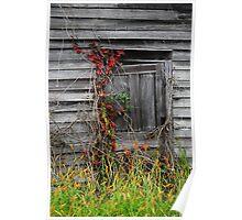 the ol' barn door Poster