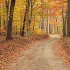 Tuscarora Autumn by jimHphoto
