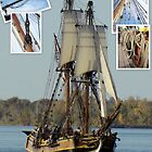 The Lady Washington II by Susan Vinson