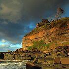 Tenacity of Nature - Garie Beach, NSW by Malcolm Katon
