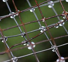 grids and layers  by john  Lenagan