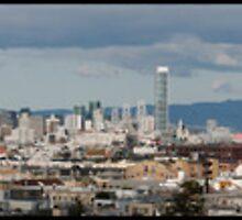 San Francisco Skyline by Patrick T. Power