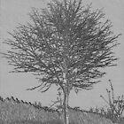 Lone Tree by KatDoodling