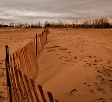 Snow Fence On The Beach by JD Dorosiewicz