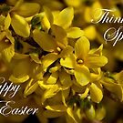 Forsythia card by JHRphotoART