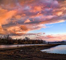 """""""Oh My! Would Ya Look At That Sky?"""" by Melinda Stewart Page"""