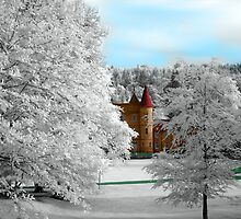 Infrared photo of Callander house Falkirk. by James Kerr