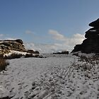 Bellever Tor in February by sylentbob